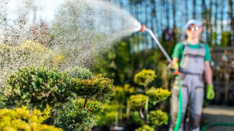Gartenbewässerung mit Wasserschlauch