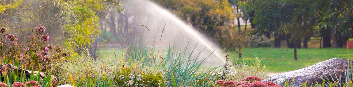 Gartenbewässerung mit Sprenkler
